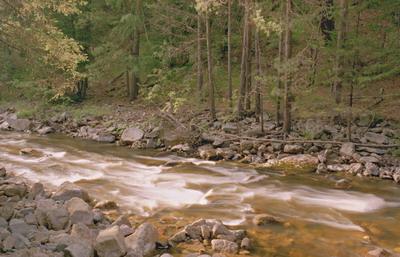 смотреть мультфильм онлайн речка которая течет на юг
